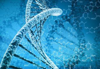 γονίδιο
