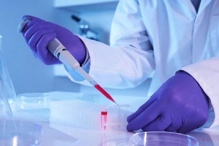 Ξεκίνησε πρόγραμμα ανάπτυξης θεραπείας του Διαβήτη τύπου 1 με Βλαστοκύτταρα