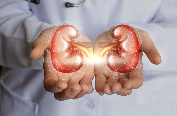 Ανησυχητική αύξηση των ασθενών με νεφρική νόσο. Κύριες αιτίες ο διαβήτης & η υπέρταση